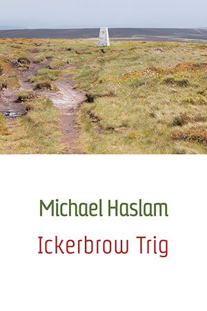 michael-haslam-ickerbrow-trig-658a4e70